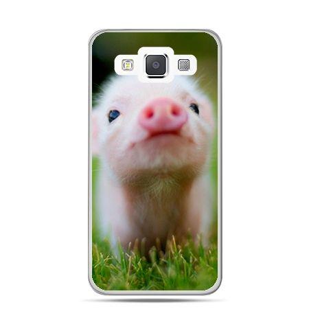 Galaxy J1 etui świnka