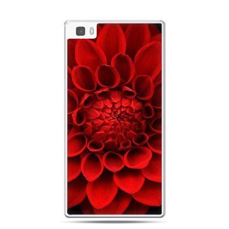 Huawei P8 etui czerwona dalia