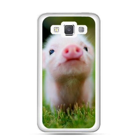 Etui na Galaxy A5 świnka