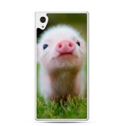 Xperia Z1 etui świnka