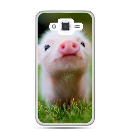 Etui na Galaxy J7 (2016r) świnka