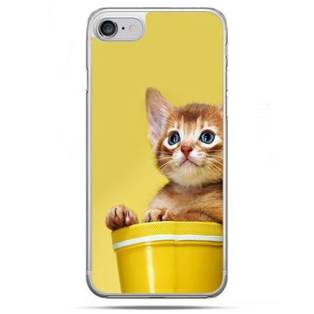 Etui na telefon iPhone 8 - kot w doniczce